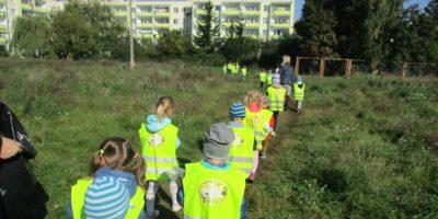 Akcja ekologiczna Sprzątanie świata