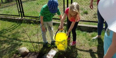 Praca w ogrodzie przedszkolnym