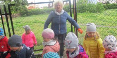 Prace w ogrodzie przedszkolnym