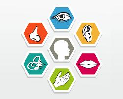 Psychologiczne i emocjonalne skutki zaburzeń integracji sensorycznej